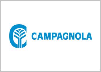 Vareador aceitunas Campagnola